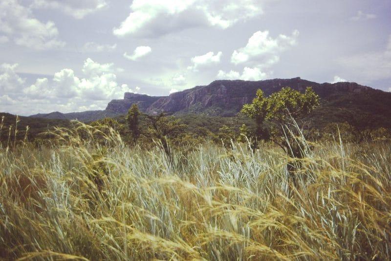 Rift Valley - Tanzania trekking trip
