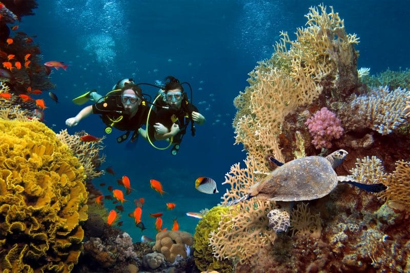 Gozo scuba diving holiday