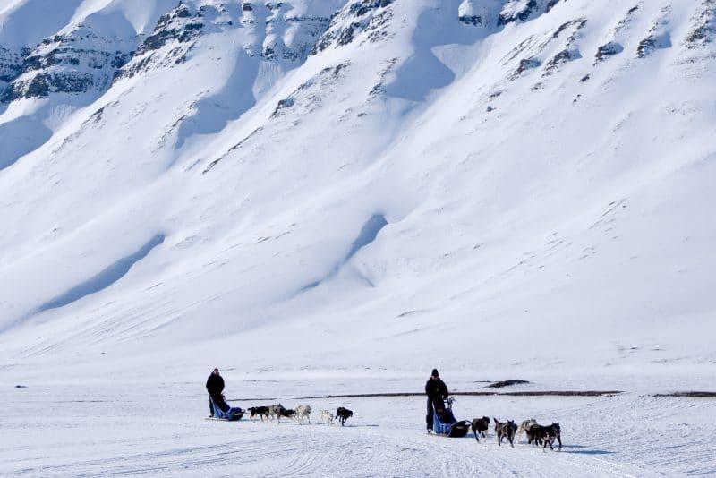 Dogsledding trip to Svalbard