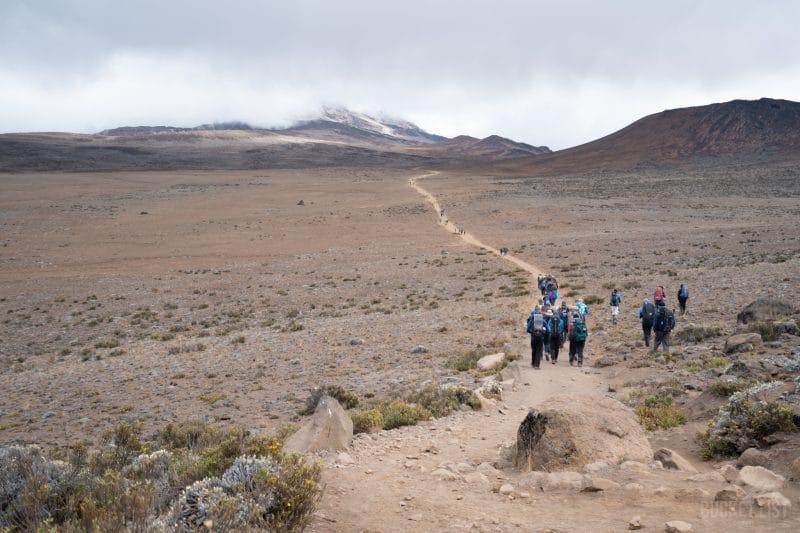 Trekking to Kilimanjaro