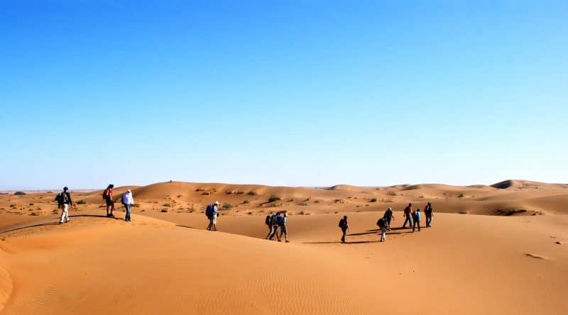 Sahara treks