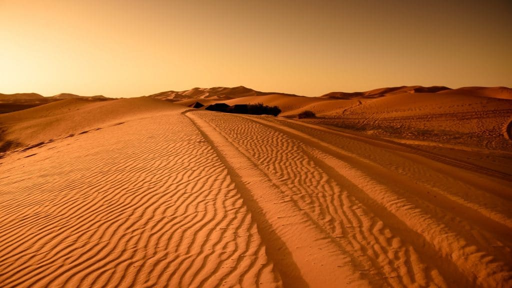 Trekking in the Sahara Desert