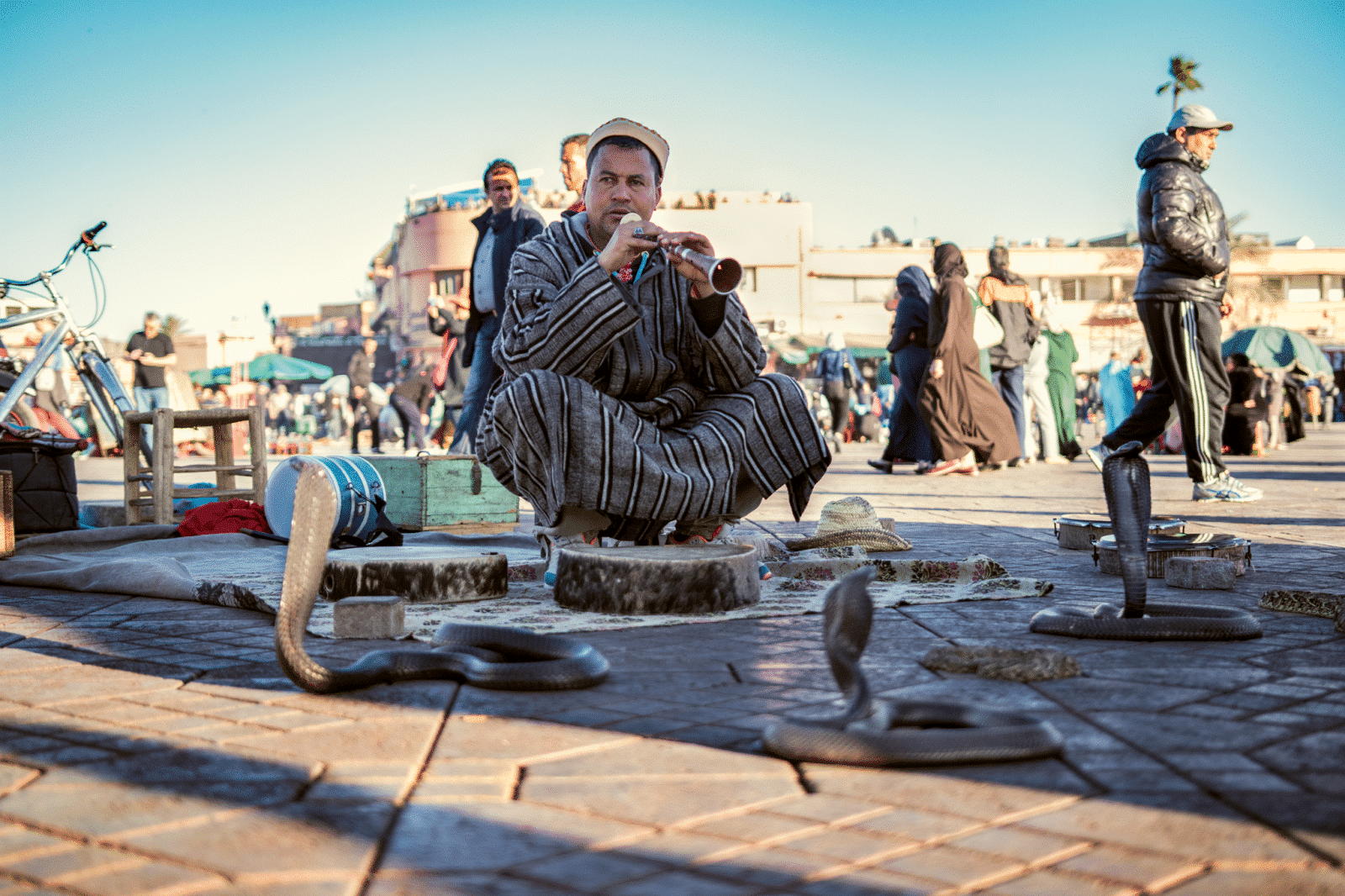 Marrakech travel - entertainers