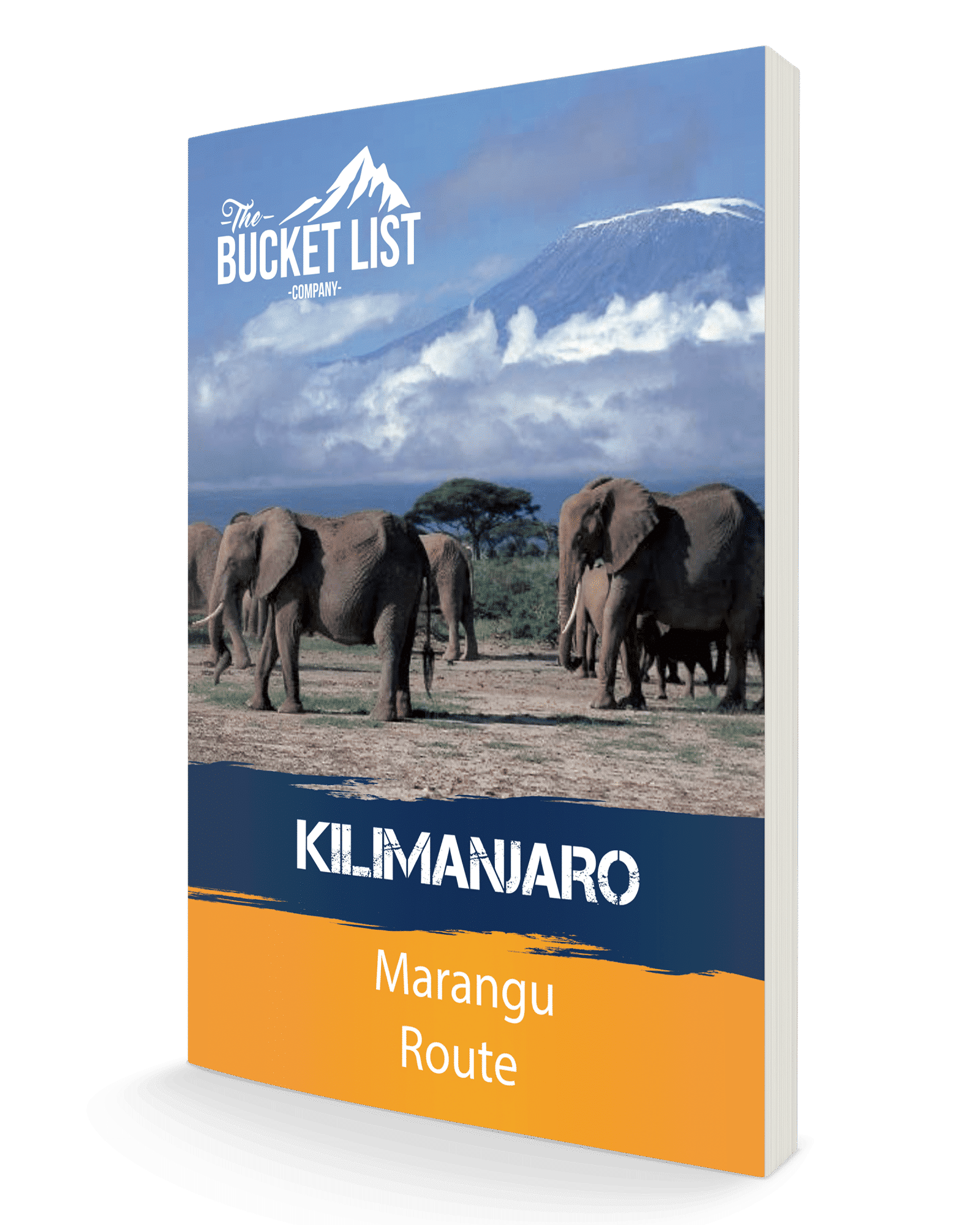 Kilimanjaro to Ngorongoro Crater Cycle Tour Free Guide