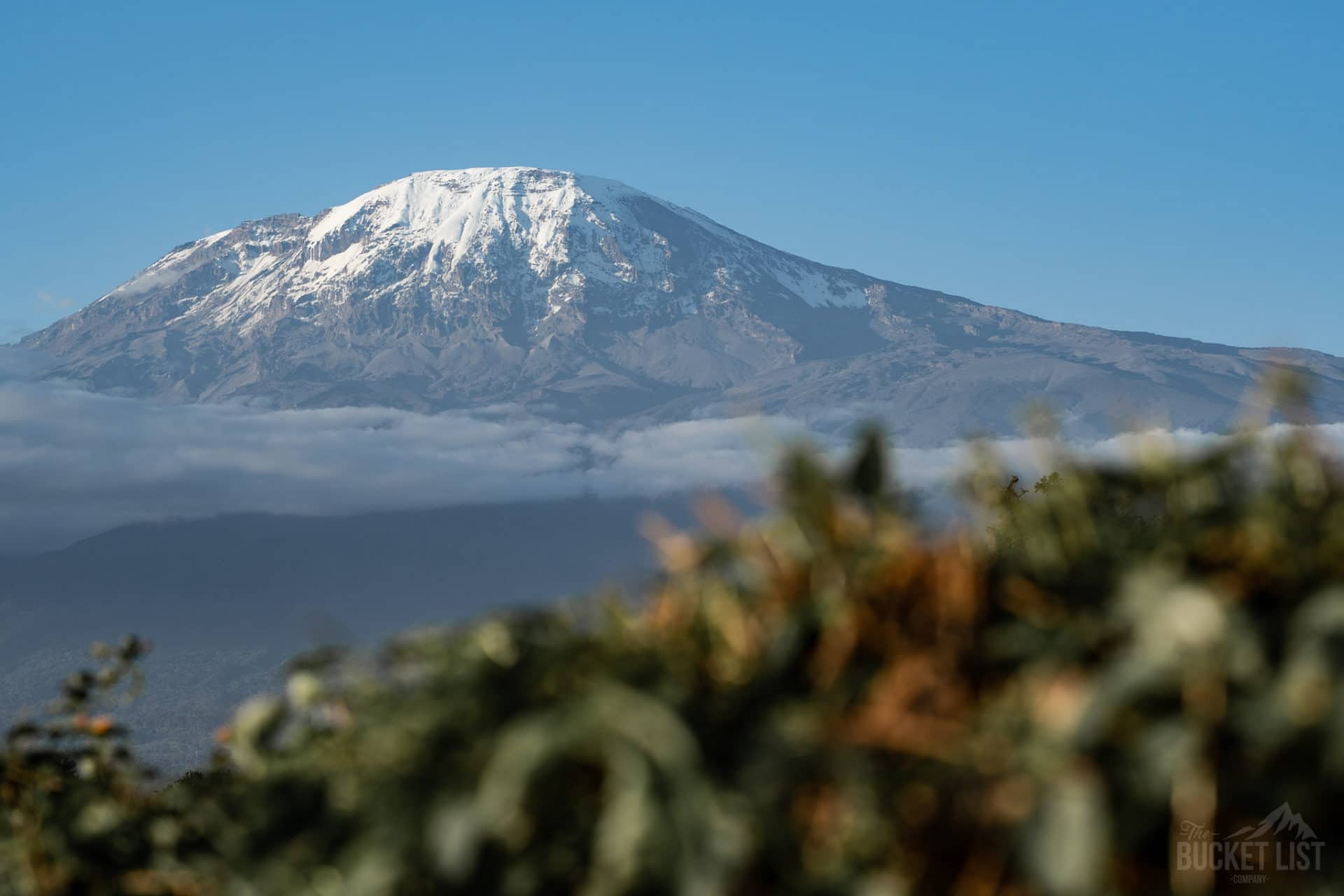 How Difficult is it to Climb Kilimanjaro?