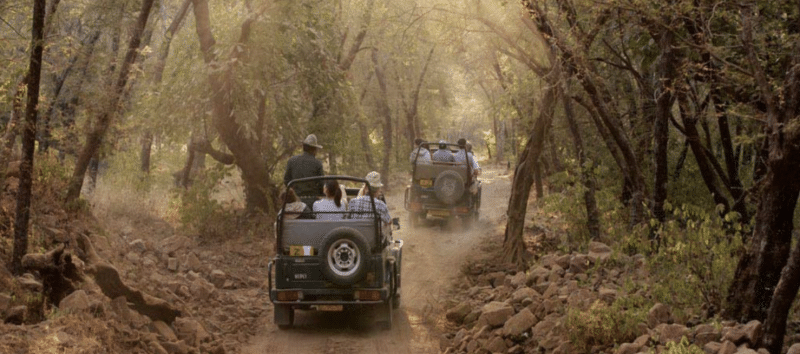 Jim Corbett National Park Safari India