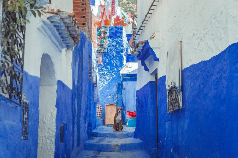 Chefchaouen - Ultimate Morocco trip