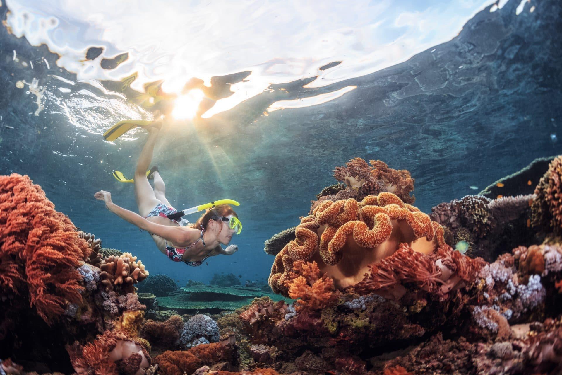 Snorkelling in the Red Sea, Jordan