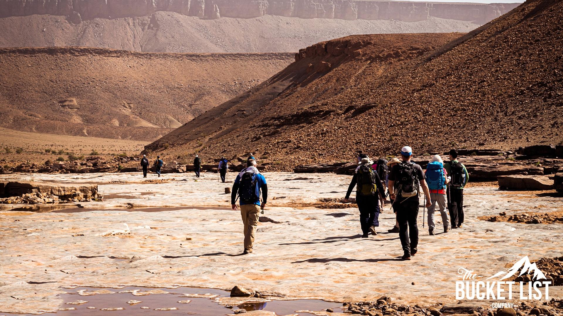 a Group of trekkers walking through the sahara desert